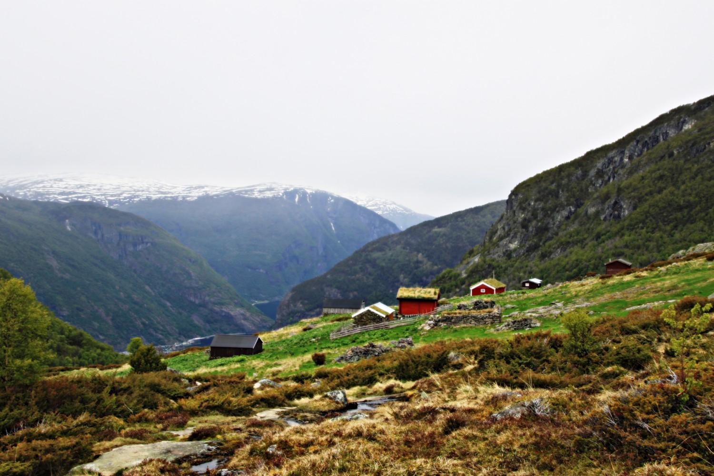 Oftedalen - ser sovidt Sognefjorden heilt nede.
